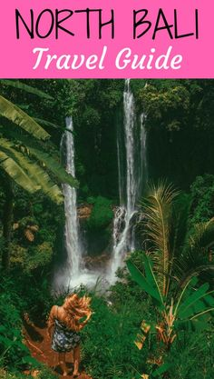 North Bali Travel Guide including top waterfalls to chase, temples, swings and where to stay. North Bali Hotel, accommodation, tours, Lovina. #NorthBali #Lovina #Bali #travelguide #travelblog #travel #guide #indonesia #waterfall #waterfallsb
