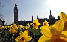 Arrival of British Summer Time heralds week of dry and sunny weather - Telegraph