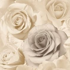 Rose Madison Wallpaper Beige (119504)