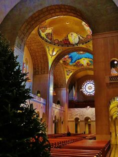 Basilica of the National Shrine of the Immaculate Conception - Wash... - Trekaroo One of the most beautiful churches in Washington DC. Near the Brookland/CUA Metro Stop. Part of the Catholic University of America (CUA).