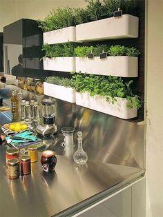 Horta organizada em vasos brancos retangulares