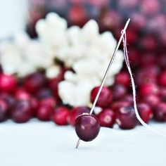 Popcorn and cranberry Christmas tree garland