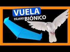 How To Make A Bionic PaperPlane That Flies Like A Bird - YouTube Aluminum Can Crafts, Paper Plane, Youtube, Paper Toys, Diy Toys, How To Plan, How To Make, Art For Kids, Airplane
