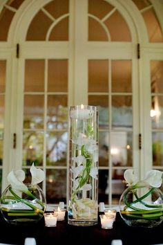 Clear glass cylinder vase. Perfect to fill with stones or gems, even submersible lighting. Measures 12 inches tall and 5 inches in diameter. Shop All Glass Vases