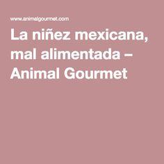 La niñez mexicana, mal alimentada – Animal Gourmet