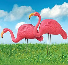 Pink Flamingo Yard Stakes 2ct