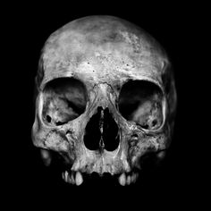 Human skull on black background.