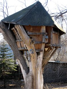 treehouse by plebeian regime, via Flickr