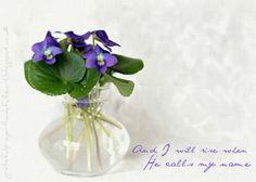 With a Grateful Prayer and a Thankful Heart: Faith