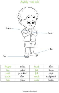 Eyes Nose, Polish Words, Polish Language, Perfect English, English Worksheets For Kids, Teaching English, Nursery Rhymes, Homeschool, Videos