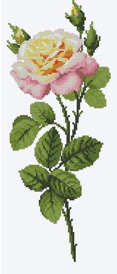 Цветы – 1,024 photos | VK