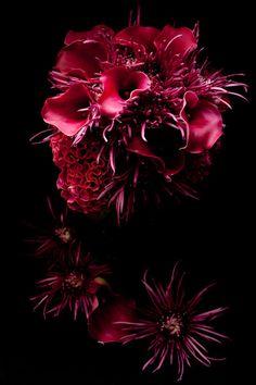FLOWBULOUS by Atsushi Taniguchi