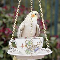 Bird feeders can transform a garden or backyard into a lively and bustling outdoor space. Rather than hanging a standard store-bought feeder, create a teacup bird feeder that will serve as an elegant and stylish outdoor statement piece. It would also make an imaginative gift for your bird-watching or gardening friends.