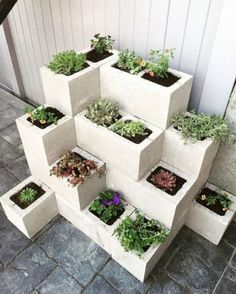 Cheap and simple DIY garden ideas that anyone can make 31 # for . - Cheap and simple DIY garden ideas that anyone can make 31 ideas diy cheap - Diy Garden, Garden Beds, Garden Projects, Wooden Garden, Herb Garden, Diy Projects, Cinder Block Garden, Cinder Block Ideas, Garden Ideas With Cinder Blocks