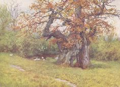 The Waller Oak, Coleshill, Helen Allingham