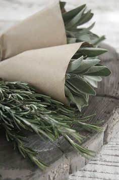 Fresh bunches of sage and rosemary..