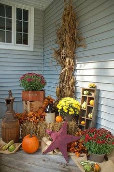 Gourd Display using a old box