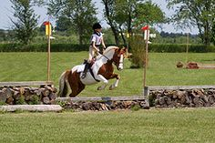 Last set of jumps on the cross country course. This is by far the most interesting looking jump on the course. | Flickr - Photo Sharing!