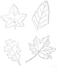 coloriage-feuille-automne-contour