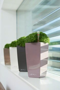 CUBICO with irrigation system: less frequent watering and better plant growth! Herb Planters, Indoor Planters, Planter Pots, Small Space Gardening, Kitchen Gardening, Urban Gardening, Self Watering Planter, Plant Growth, Cool Plants