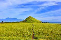 Pulau Kenawa merupakan sebuah pulau kecil yang terletak tepat diantara dua pulau yang namanya sudah tidak asing lagi, yakni Pulau Lombok dan Sumbawa. Meski tergolong sebagai sebuah pulau yang kecil mungil, namun Pulau Kenawa juga memiliki keistimewaan yang tak menakjubkan dengan pulau pulau lain. [Photo by instagram.com/deristaaurina]