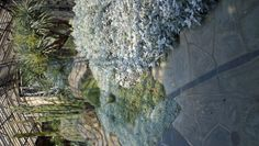 Grey Garden, Longwood Gardens