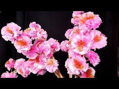 Cara Membuat Bunga Dari Tali Rafia Diy Plastic Rope Beautiful