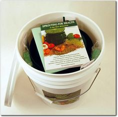 Sprout food storage kit