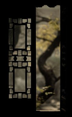 Tree & Window by Jonathan Kos-Read on Flickr.