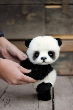 It's soooooo.. cute