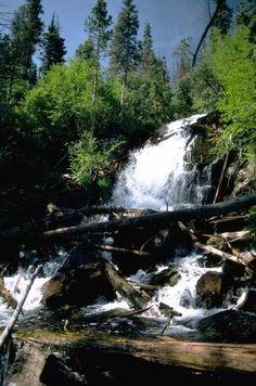 Fern Falls, Rocky Mountain National Park