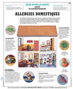 84_allergie_domestique_BD.jpg (921×1117)