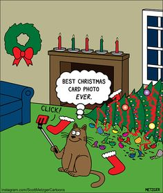 Scott Metzger draws these adorably funny kitty cartoons and we just had to share! Christmas Comics, Christmas Jokes, Christmas Cartoons, Christmas Cats, Xmas, Merry Christmas, I Love Cats, Crazy Cats, Cool Cats
