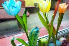 Eksperymenty dla dzieci - Moje Dzieci Kreatywnie Plants, Plant, Planets