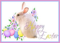 Thanksgiving Wallpaper, Christmas Wallpaper, Easter Bunny, Easter Eggs, Pink Rose Pictures, Beautiful Wallpaper Images, Ostern Wallpaper, Happy Easter Sunday, Church Backgrounds
