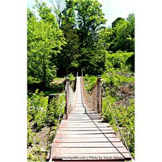 Want to do something fun & affordable with the kids before school starts? Sarah Newton captured this photo of the swinging bridge at nearby Caesar Creek State Park -- Play & hike, and then come into town to stay! Swim in the pool & then brunch on Sunday!   http://clintoncountyohio.com/list/parks/caesar-creek-state-park2   http://clintoncountyohio.com/list/stay  #visitclintoncounty #ohio #themidwestival #midwestmoments #swohio