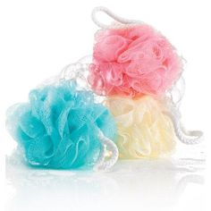 Image result for picture of bath sponge loofah