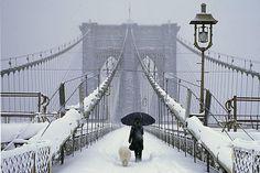 Brooklyn Bridge - NYC, NY this last winter (2013/14)