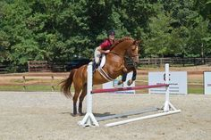 15 Riding Exercises to Correct Common Leg, Seat and Hand Problems