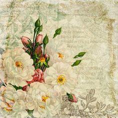 He encontrado estas bonitas láminas de flores.  Os pueden servir para forrar la tapa de una caja.  También para crear una etiqueta  Espero ...