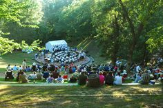 Theater in the Woods  http://www.caponiartpark.org/  Eagan Minnesota