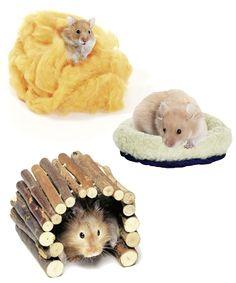 Cunas y refugios para hámster | Decoración para roedores con precios low cost • Cribs for hamsters