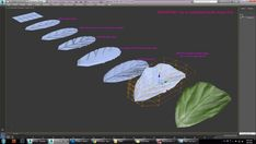 Maya Modeling, Modeling Tips, Polygon Modeling, 3ds Max Tutorials, Blender Tutorial, 3d Model Character, Modeling Techniques, 3d Tutorial, Graphic Design Tips