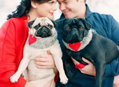 If you've got a pair of pups, you better believe they need to be included in your engagement photo shoot.