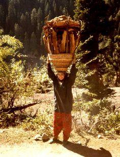 Returning with wood, Kashmir