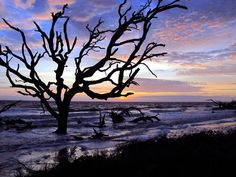 What to do on Jekyll Island