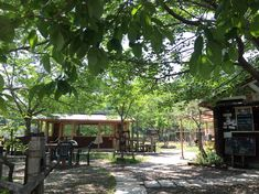 Nara, Cabin, House Styles, Plants, Home Decor, Cabins, Flora, Cottage, Interior Design