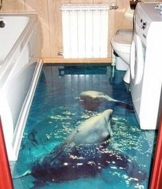 1000 images about ocean room ideas on pinterest for Dolphin bathroom design