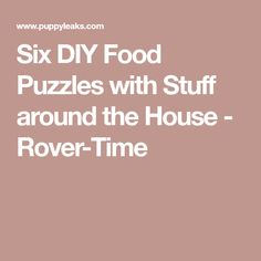 Six DIY Food Puzzles with Stuff around the House - Rover-Time