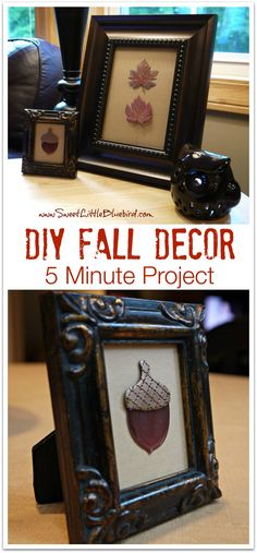 DIY FALL DECOR - Minutes to make! Use this tip for adorable, inexpensive decor for every holiday! | SweetLittleBluebird.com